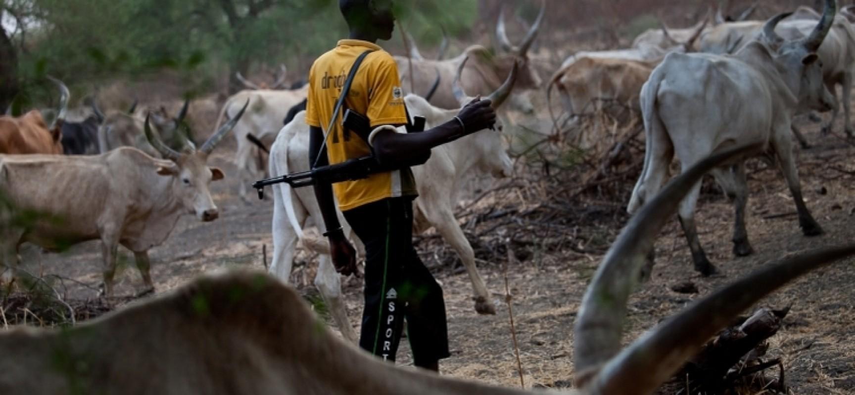 Fulani herdsmen attack Benue community, kill four - BarristerNG.com